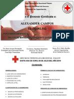 Manejo del Paciente Quemado - (Alexander Campos).pptx
