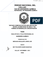 Jorge Tesis Títuloprofesional 2013