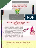 Cuidados de Enfermerias de Hipertension Arterial en El Adulto Mayor