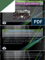 Organismo Ejecutivo