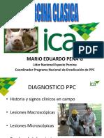 Diagnóstico PPC