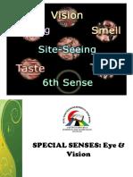 organ deria khas - mata