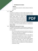 DETERMINACION DE CENIZAS informe por terminar.docx