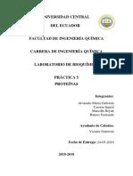 Práctica-5-Proteínas.docx