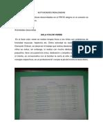 ACTIVIDADES REALIZADAS.docx