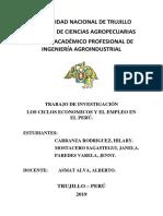Ciclos Economicos y Empleo en El Peru 2000 a 2018 (1)