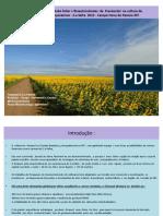 Palestra Girassol.pdf