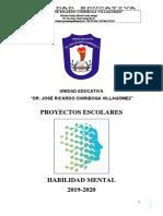 PROYECTO HABILIDAD MENTAL.docx