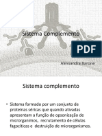 Sistema Complemento.pdf