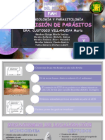 Transmision de Parasitos (1)