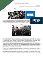 Conflicto Armado Interno, resumen
