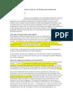 Crítica a Instrumentum Laboris-Card. Brandmüler