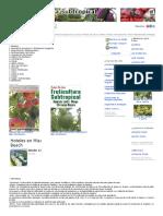 Agricultura. El Cultivo Del Coco. 1ª Parte