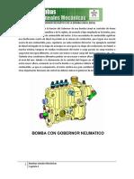 Cap_4_BLM_Imprimible.pdf