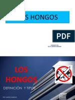 07 Los Hongos