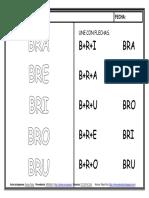 BR.pdf