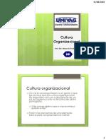 Cultura Organizacional Completa Para Prova 2018