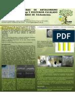 Poster Pl480 Luis Rev 1