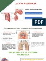 CIRCULACION PULMONAR.pptx