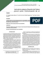 kerion.pdf