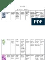 tabladebacteriasgrampositivasynegativas