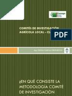 Comits de Investigacin Agrcola Local