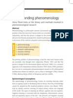 Understanding Phenomenology