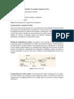 procedimiento de megado y termografia.docx