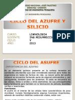Ciclo Del Asufre y Silicio