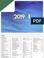 Ansys Capabilities 2019 r1
