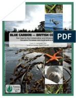 Blue Carbon Bc Report Final_web