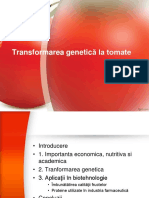 Transformarea Genetica La Tomate