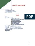 Summer Internship Project guidelines.docx