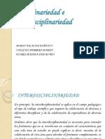 Disciplinariedadeinterdisciplinariedad Fani Joseruben Martin 130926131543 Phpapp01