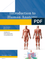 01. Introduction to Human Anatomy