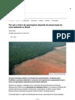 Por Que o Futuro Do Agronegócio Depende Da Preservação Do Meio Ambiente No Brasil - BBC News Brasil