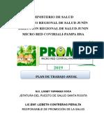 Plan Anual de Promsa 2019