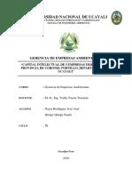 CAPITAL INTELECTUAL_NEYRA RODRIGUEZ_QUISPE QUISPE_ 2019.docx