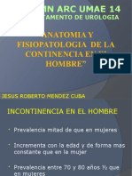 incontinencia urinaria  postprostatectomia