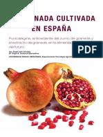 Evaluacion Del Contenido de Polifenoles Totales y La Capacidad Antioxidante de Los Extractos Etanolicos de Los Frutos de Aguaymanto de Diferentes Lugares Del Peru