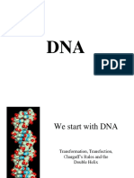 DNA.ppt