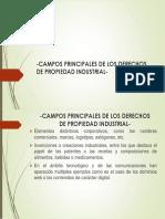 02 - Campos principales de los Derechos de Propiedad Industrial..pptx
