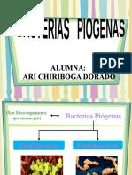 Expo Sic Ion de Bacterias Piogenas 2