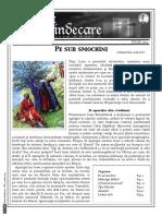 Pe sub smochini.pdf
