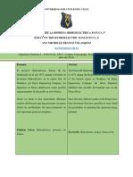 ANA_FRANCO_2018120321_PATUCA_3
