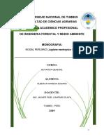 Monografia- Trabajo Encargado Nogal Peruano