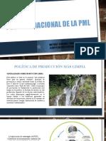 gestion ambiental previo