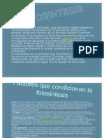 A.delgado Present.fotosin