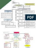 mapas bioetica.docx