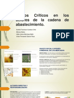 Puntos críticos en la cadena de abastecimiento (1).pptx